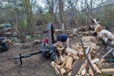 2203 splitting wood.jpg