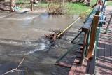 2222 Raging waters 4 16 16.jpg