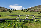 2425 South Canyon.jpg