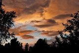 2541 Sunset