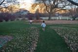 3113 kids in leaves.jpg