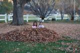 3116 kids in leaves.jpg