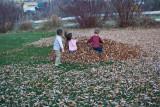 3119 kids in leaves.jpg