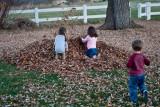 3126 kids in leaves.jpg