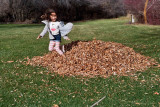 3143 kids in leaves 2.jpg