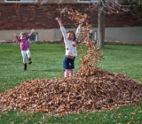 3150 kids in leaves.jpg