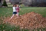 3151 kids in leaves.jpg