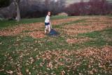3154 kids in leaves.jpg