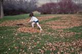 3155 kids in leaves.jpg