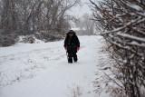 3188 Jackie walking snow.jpg