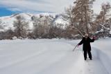 3226 Jackie walking snow.jpg
