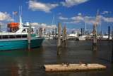 Atlantic Highland Marina