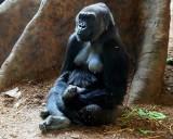 Ngozi  and  her  new  born  Baby    P1269414.jpg