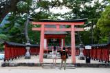 Miyajima 7