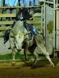Mariposa County Fair Rodeo - Bull Rider
