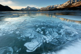 January 2016 - Abraham Lake Methane Bubbles