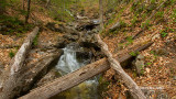 Gatineau Park Waterfall Trail