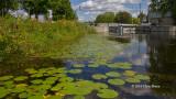 Marrickville Locks