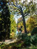 Auburn Lake at Mt Auburn Cemetery