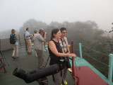 Birding on a misty morning