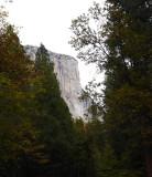 Fall visit to Yosemite 2015