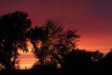 colibri_2013 05 24_0056_vendredi soir-800.jpg