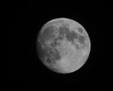 2013 17 Sep_faucon_0142_lune-800.jpg