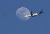 2014 03 13_faucon_0185_lune et avion-800.jpg