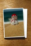 Sand Hill Snowman