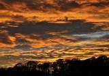 A Blazing Sky
