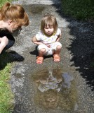 Hey, Who's in That Puddle?