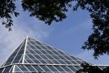 Windows at the Metropolitan Museum of Art