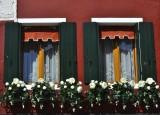 Cheerful Burano Windows
