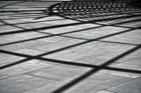 Shadows Across Lines