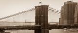 Looking At The Statue Of Liberty Through The Lines Of The Brooklyn Bridge