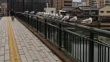 Bridge of Doves