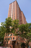 Lower Harlem  Public Housing