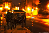 Horse Carriage on Saint Louis Street.