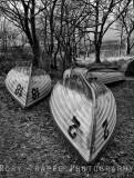 Trawsfynydd fishing boats