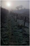 The path from Cwm Bowydd to Tyddyn gwyn