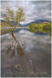 Llyn Padarn portrait and polariser