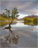 Llyn Padarn (evening)
