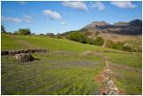 Llwyn Crai farm