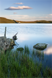 creg lake portraitb.png