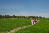 Enjoying the winds in the paddy field