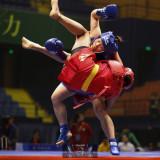 8th Wushu Sanda World Cup 2016