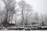 Winter, Japan