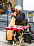 The musicians, along the streets of Quebec City