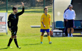 Soccer Referee in Action