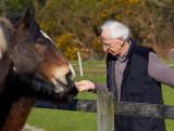 feeding the horses.jpg